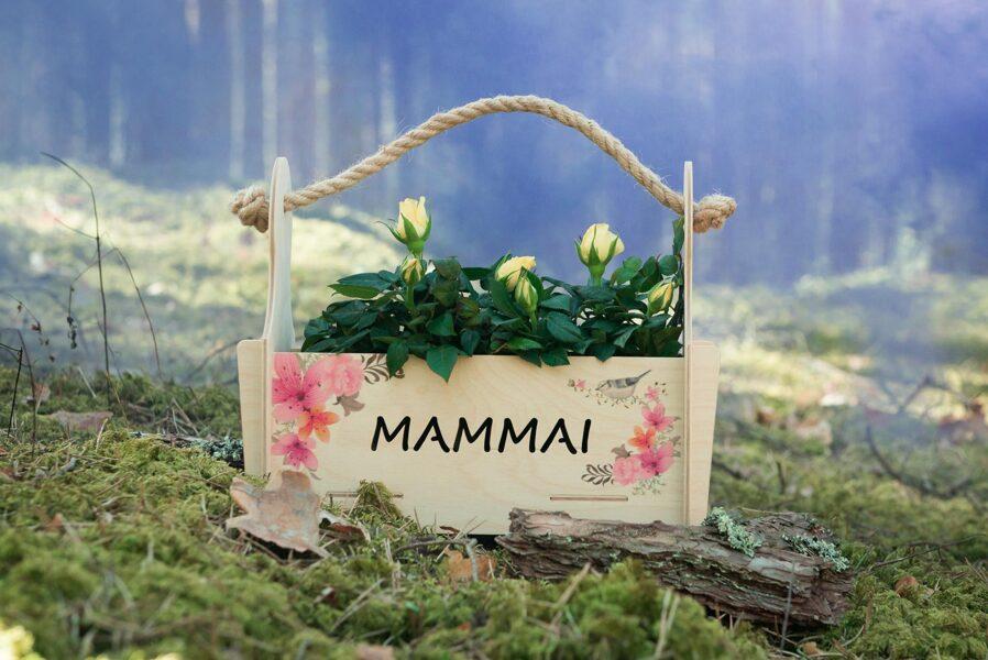 Ziedu kaste Mammai nr. 1